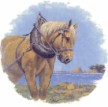 Percheron Single (150mm)