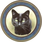 Black Cat (R) Single (90mm)