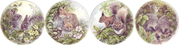 British Wild Life Set of 4 (90mm)