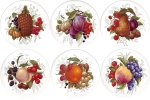 Fruit Set of 6 (150mm)