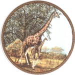 Giraffe Single (150mm)