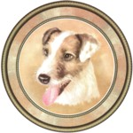Jack Russell Haired (R) Single (90mm)