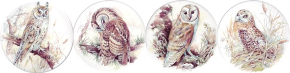Owls 1 (150mm) set of 4