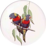 Rainbow lorikeet Single 90mm