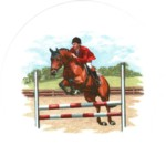 Show Jumping Single (150mm)