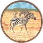 Zebra Single (150mm)